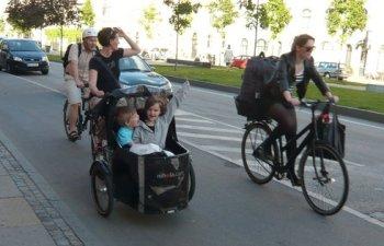 Tipi da bici i pi assurdi sulle due ruote piazza puliti for Trasportino cane scooter